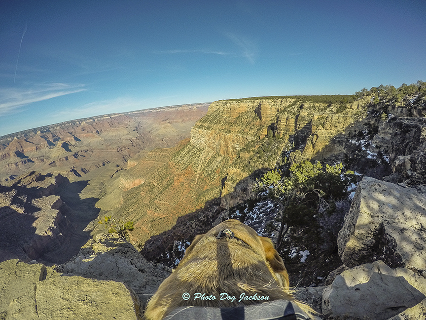 My Grand Canyon Photograph!