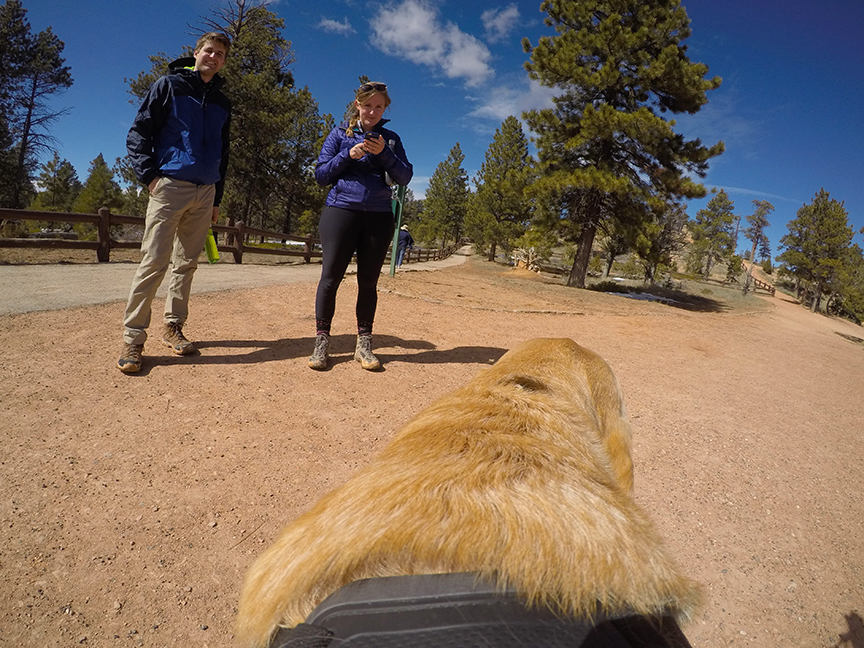 Some of the humans I met at Bryce Canyon.